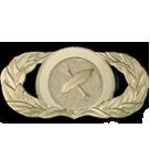 mangement badge MISSION_SENIOR